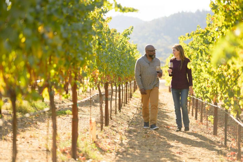 5/5: Take a casual stroll among the vines
