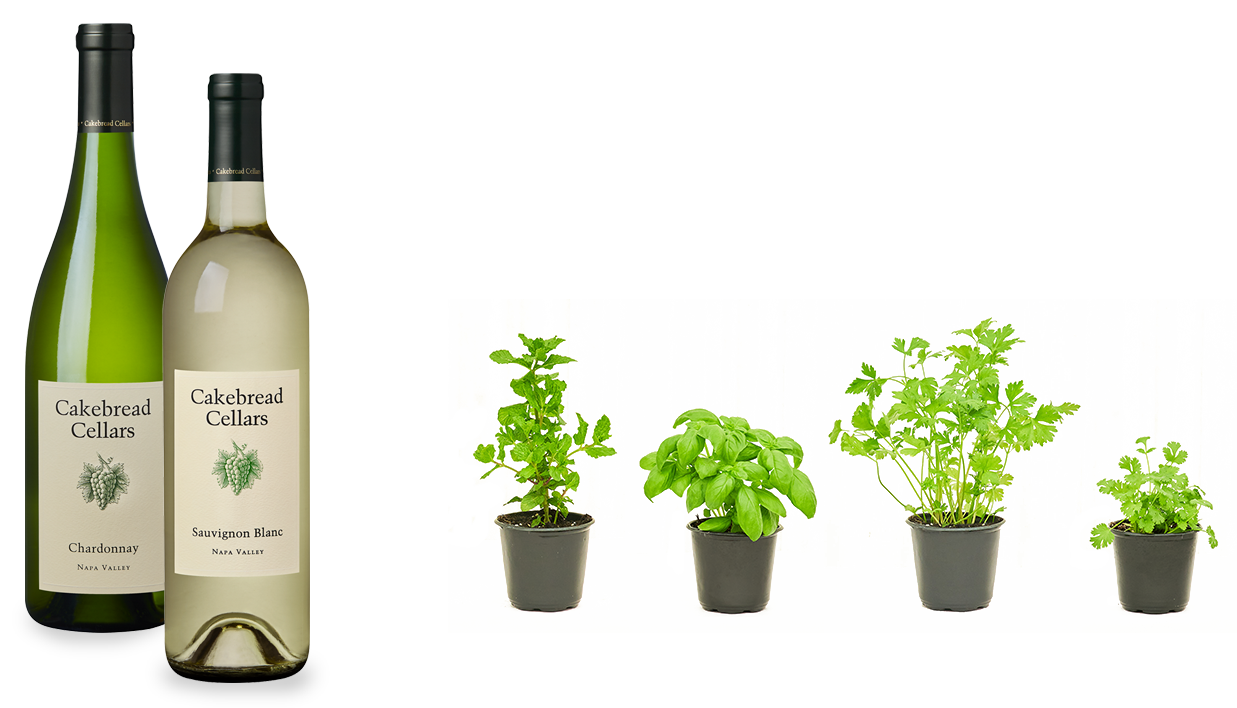 rooted-herbs-bottles1